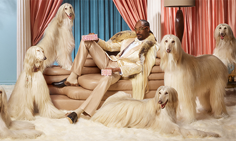 Klarna partners with Snoop Dogg