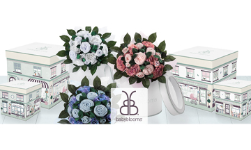 Babyblooms appoints Dee Carpenter