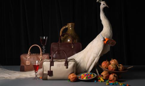 Visual Artists represents photographer Matthew Donaldson